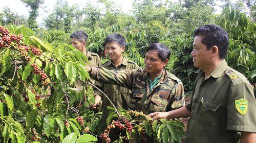 Tự quản bảo vệ nông sản
