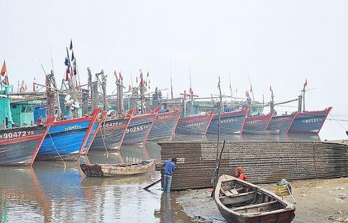 Quảng Ninh: Khai thác gắn với bảo vệ nguồn thủy sản