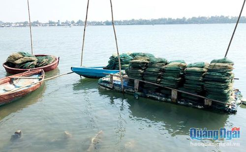 Ngư lưới cụ bị cấm sử dụng khai thác hải sản: Khó kiểm soát