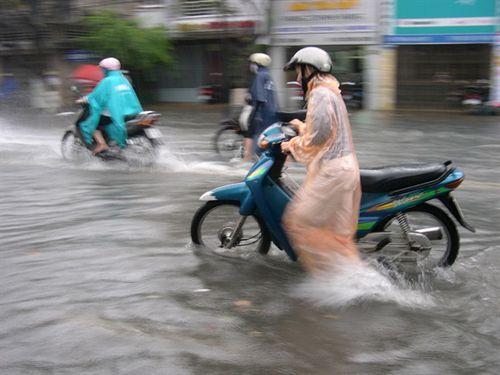 An Giang: Không chủ quan với bão số 9