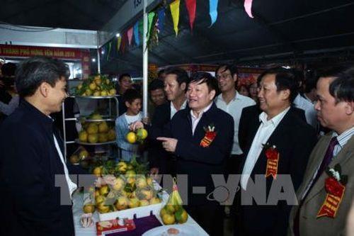 Lễ hội tôn vinh sản phẩm cam Hưng Yên