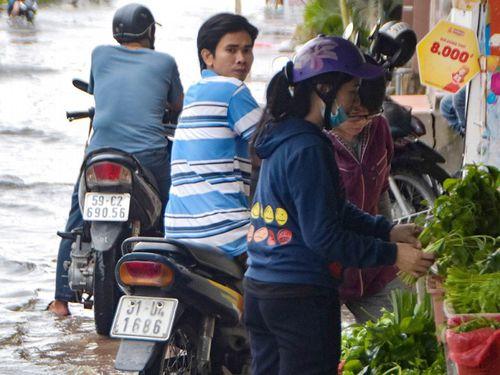 TPHCM tăng cường phòng chống dịch bệnh, vệ sinh an toàn thực phẩm sau bão số 9