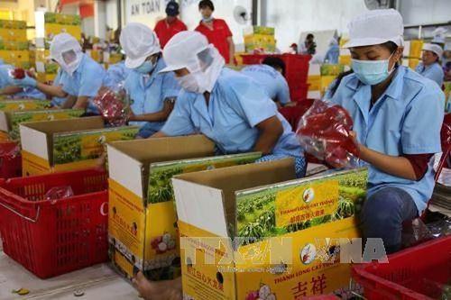 Gỡ rào cản cho xuất khẩu nông sản