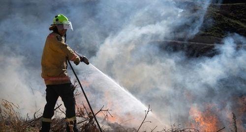 Cháy rừng lan rộng ở New Zealand, hàng ngàn người phải di tản
