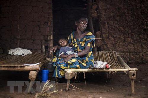Phát hiện ''vũ khí'' mới trong cuộc chiến chống sốt rét