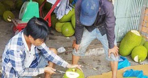 Trái cây bán sang Trung Quốc lại sốt giá