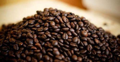 Giá xuất khẩu cà phê thấp nhất trong 5 năm