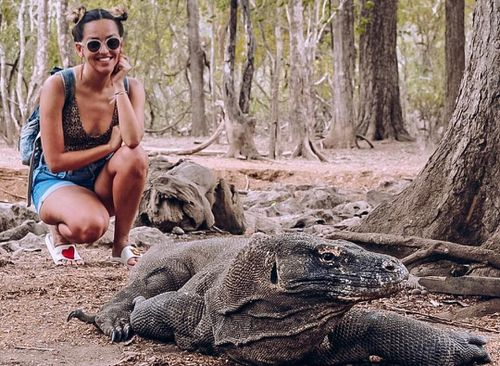 Indonesia dự định đóng cửa đảo Komodo một năm để bảo tồn loài rồng quý