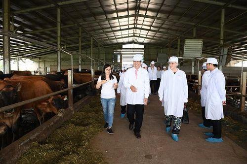 Sữa cô gái Hà Lan đón Thứ trưởng Hà Lan thăm dự án phát triển bò sữa tại Hà Nam