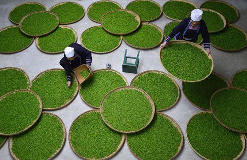 Vẻ đẹp của những làng nghề Trung Quốc