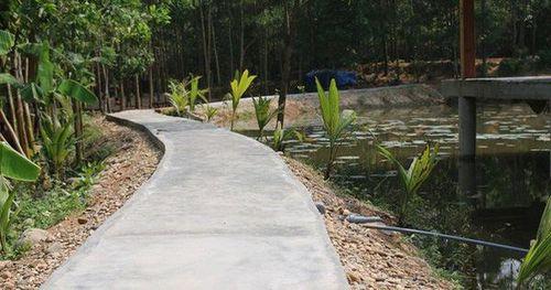Tháo dỡ khu nghỉ dưỡng 'mọc' trái phép giữa rừng phòng hộ: Cân nhắc tuyến đường bê tông và một số chòi tranh tre