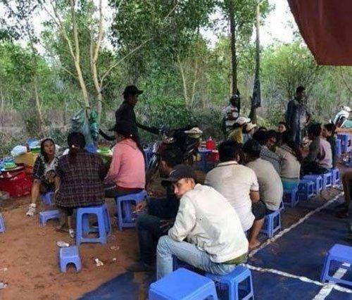 Bắt sới bạc 'khủng' nằm sâu trong rừng ở Bình Thuận