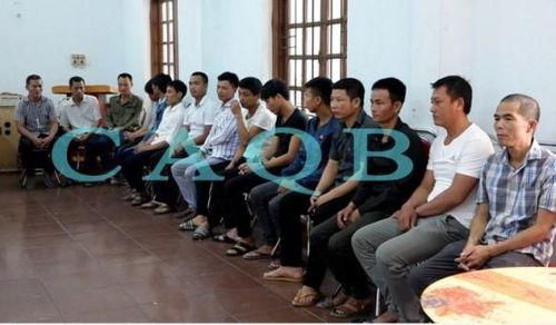 Bắt giam nhóm đối tượng phá rừng gỗ mun trong Vườn di sản Phong Nha
