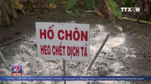Dịch tả lợn châu Phi ' tấn công' các trại nuôi lợn rừng lai ở Bình Phước Thể loại: Kinh tế, PX Bình Phước