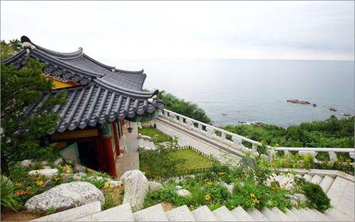 Đến Hàn Quốc chiêm ngưỡng vẻ đẹp phong cảnh Gangwon-do
