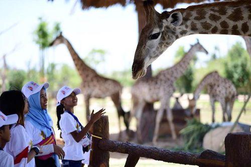 Các bạn nhỏ Indonesia phấn khích trước 'River Safari' tại Nam Hội An