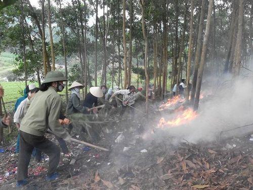 Phòng, chống cháy rừng: Không thể chủ quan, lơ là