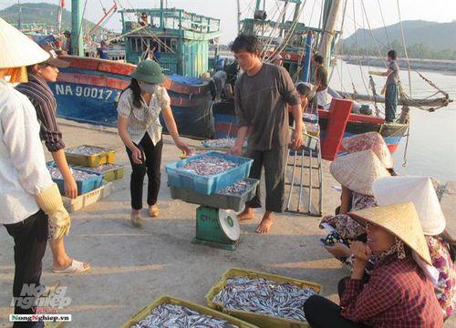 Vùng bãi ngang những mảng màu sáng - tối: Bài 4 - Ngỡ ngàng đất biển Quỳnh Phương