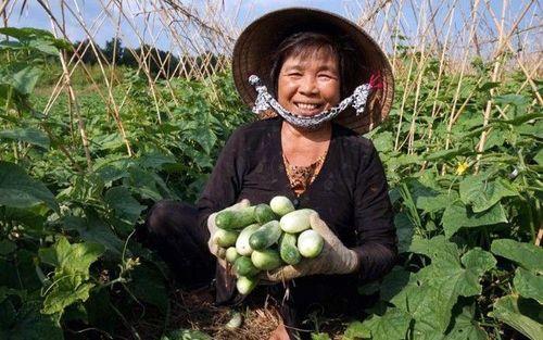 Giúp đồng bào Khmer giảm nghèo