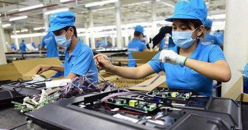 Diễn đàn Doanh nghiệp Việt Nam giữa kỳ 2019: Vai trò của cộng đồng doanh nghiệp trong phát triển bền vững