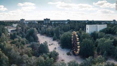 Vì sao thực vật ở Chernobyl phát triển thần kỳ sau thảm họa?