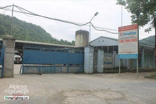 Hà Giang bất lực trước những sai phạm của Công ty Đông Tùng?