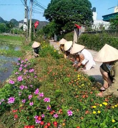 Yên Mô: Ngày càng có thêm nhiều tuyến 'đường hoa phụ nữ'
