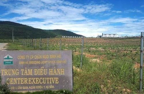 Hà Tĩnh: Dự án chăn nuôi bò Bình Hà 4.500 tỷ đồng sẽ được tái cơ cấu?