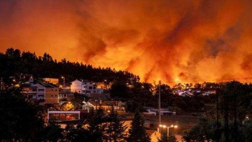 Bồ Đào Nha: Cháy rừng lớn bùng phát làm ít nhất 20 người bị thương