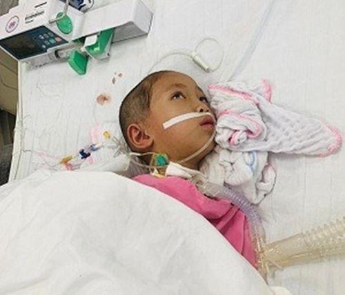 Xót thương bé gái 7 tuổi ở Phú Thọ phải nghỉ học bởi căn bệnh viêm não quái ác