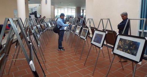 Triển lãm 180 ảnh nghệ thuật miền Đông Nam bộ