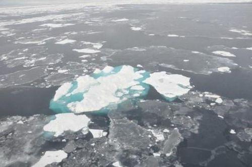 Thảm họa rác thải nhựa: Hạt vi nhựa tìm thấy ở các khu vực Bắc cực