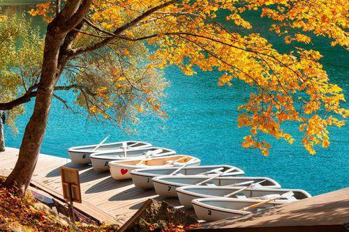 6 'thiên đường' ngắm mùa thu Đông Bắc Á
