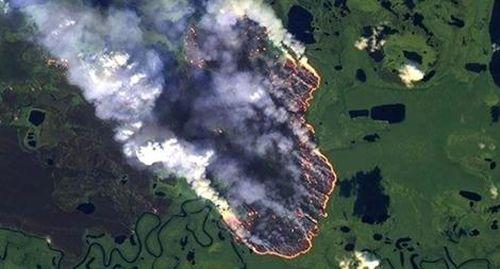 Rừng Amazon - 'Lá phổi xanh' của nhân loại đang khẩn thiết kêu cứu
