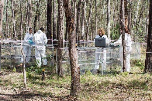 Nhà khoa học Australia: Cơ thể người chết vẫn có thể dịch chuyển