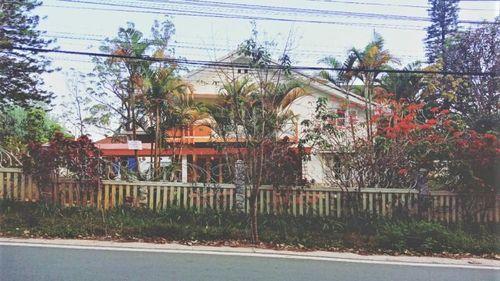 Vụ tranh chấp di sản thừa kế ở Lâm Đồng: Vì sao nguyên đơn đề nghị giám đốc thẩm?