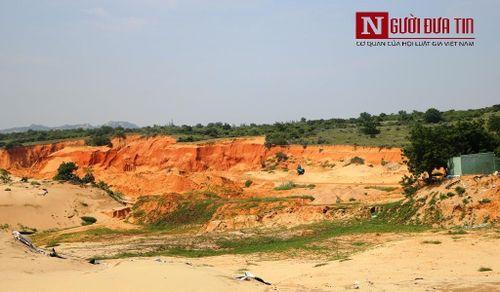Vụ 'băm nát' rừng đồi tại Ninh Thuận: Có dấu hiệu tận thu khoáng sản