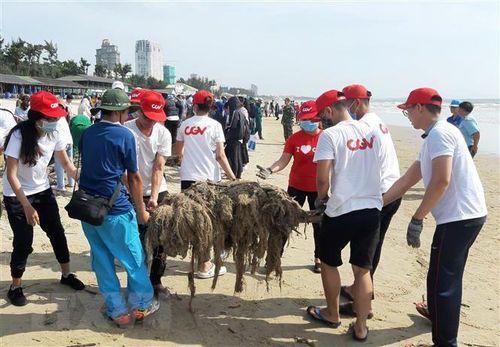 Gần 1.000 người tình nguyện thu gom rác thải tại bãi biển Vũng Tàu