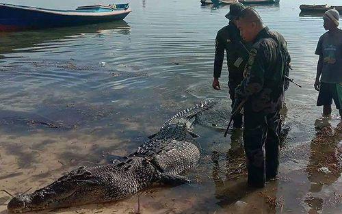 Phát hiện thi thể trong hàm cá sấu khổng lồ ở Philippines