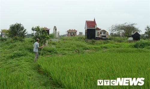 Thoải mái tàn phá nghĩa địa mộ cổ khổng lồ chứa cả tấn báu vật ở Hải Dương (kỳ 4)