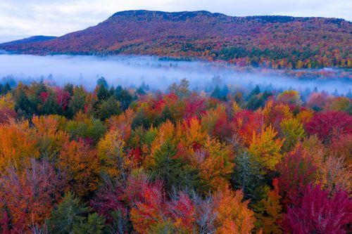 Cảnh sắc mùa thu đỏ rực khắp nước Mỹ