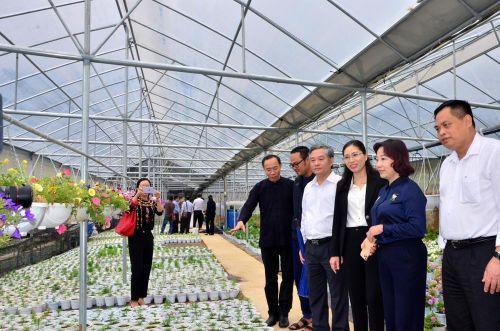 Phó Chủ tịch UBND tỉnh Vũ Thị Thu Thủy làm việc với huyện Bình Liêu về phát triển du lịch