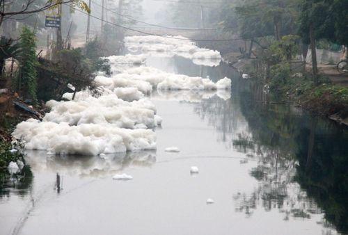 Ô nhiễm sông Nhuệ-Đáy: Xử phạt 183 cơ sở vi phạm về môi trường