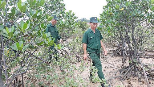Đình chỉ thi công đầm ở Đồng Rui do nằm trong quy hoạch Khu Bảo tồn đất ngập nước