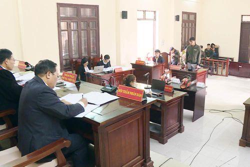 Xét xử vụ hủy hoại rừng phòng hộ ở Tiên Yên