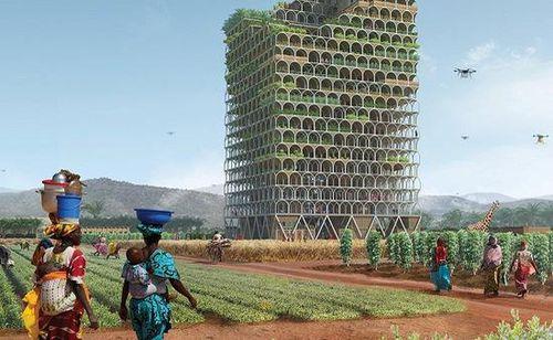 Nông trại chọc trời có thể nuôi sống cả một thị trấn ở châu Phi