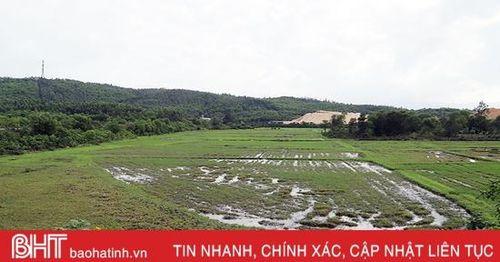 UBND tỉnh Hà Tĩnh chỉ đạo khẩn trương hoàn thành GPMB bãi đổ vật liệu nạo vét bến số 3 cảng Vũng Áng