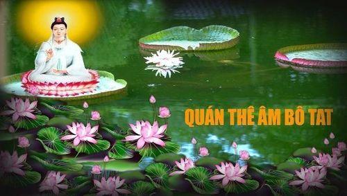 Hoa sen và thuyết luân hồi của Phật giáo