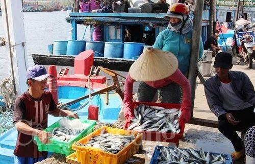 Ngành Thủy sản: Doanh nghiệp và ngư dân phải chủ động nâng tiêu chuẩn của mình lên