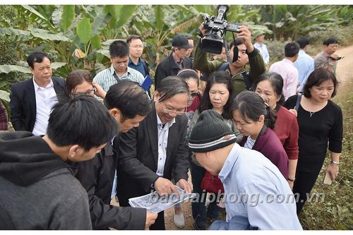 Tiếp tục mở rộng nghiên cứu bãi cọc Cao Quỳ (Hải Phòng): Một hộ dân phát hiện, lưu giữ cọc gỗ tại nhà
